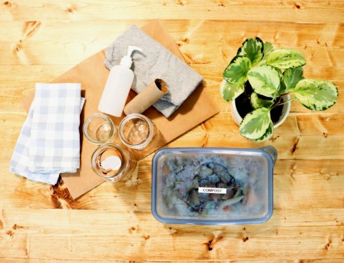 Reuse & Repurpose: Simple Ways To Use What You Have
